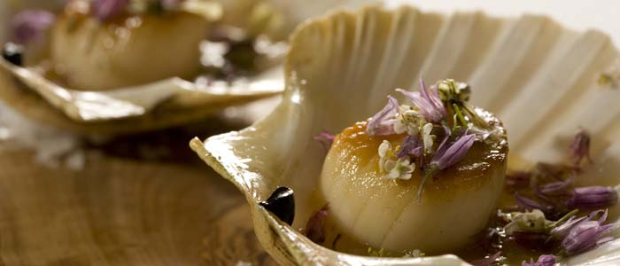 Roasted scallops with wild flowers