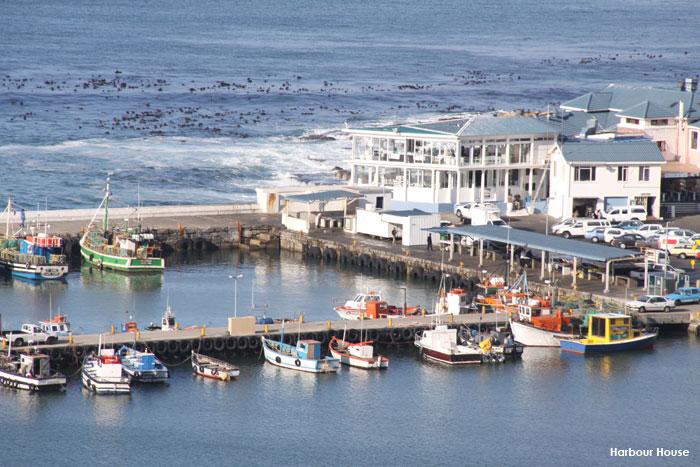 Harbour-House Cape Town