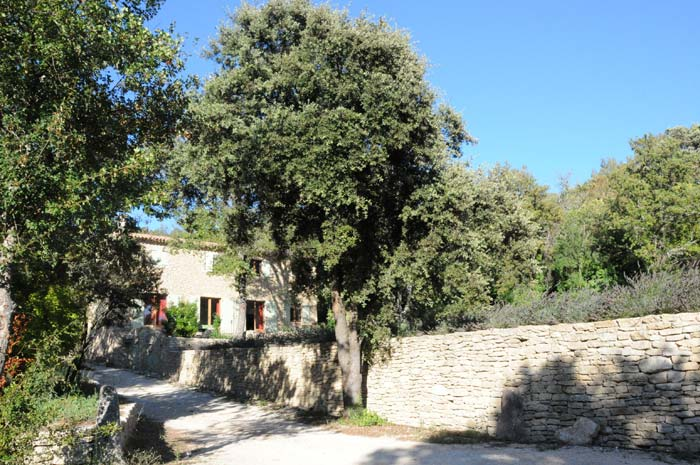 Country House in Luberon (6)