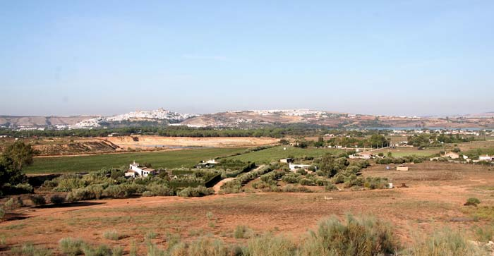 Country house Andalucia (14)