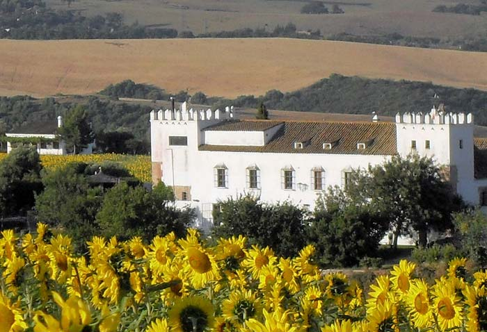 Country house Andalucia (1)