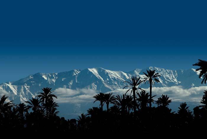 Luxury Villa Marrakech (6)