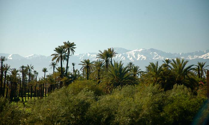 Luxury Villa Marrakech (2)