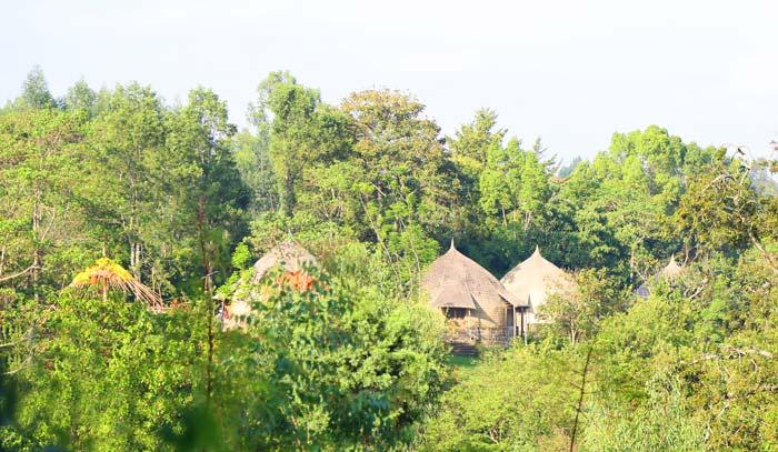 Lodge-Aregash-Shah