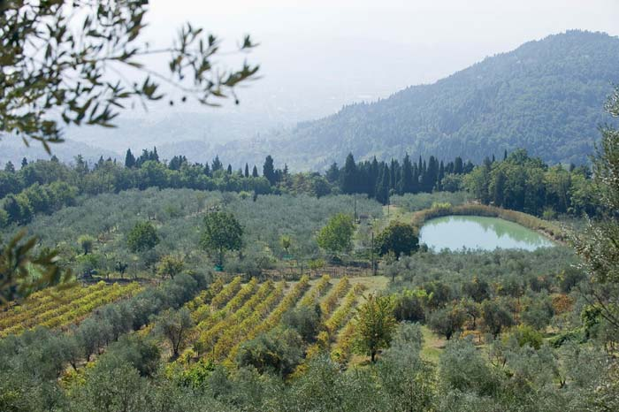 Country estate in Fiesole Tuscany Italy (2)