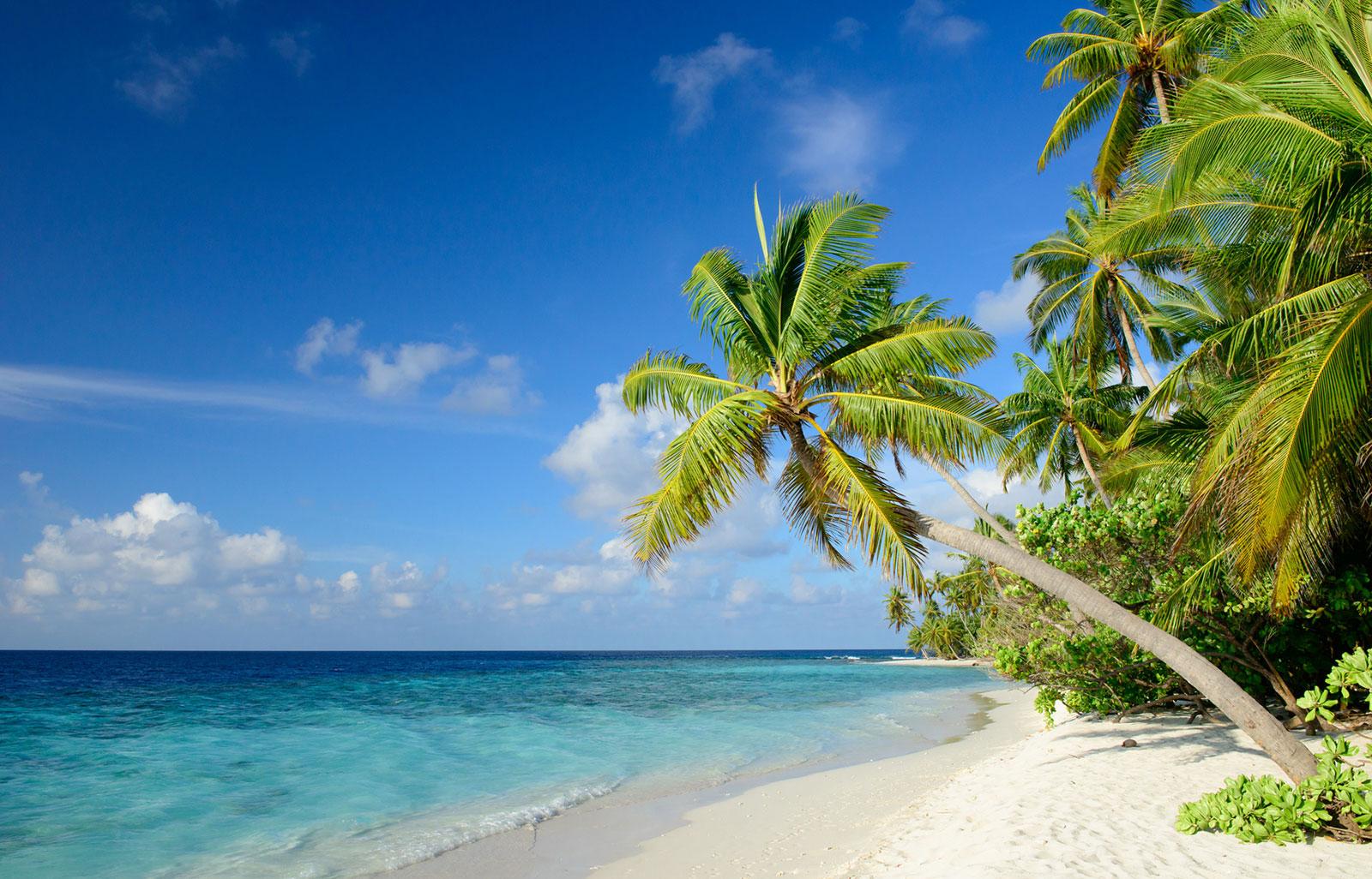 Barbados Erfahrungen