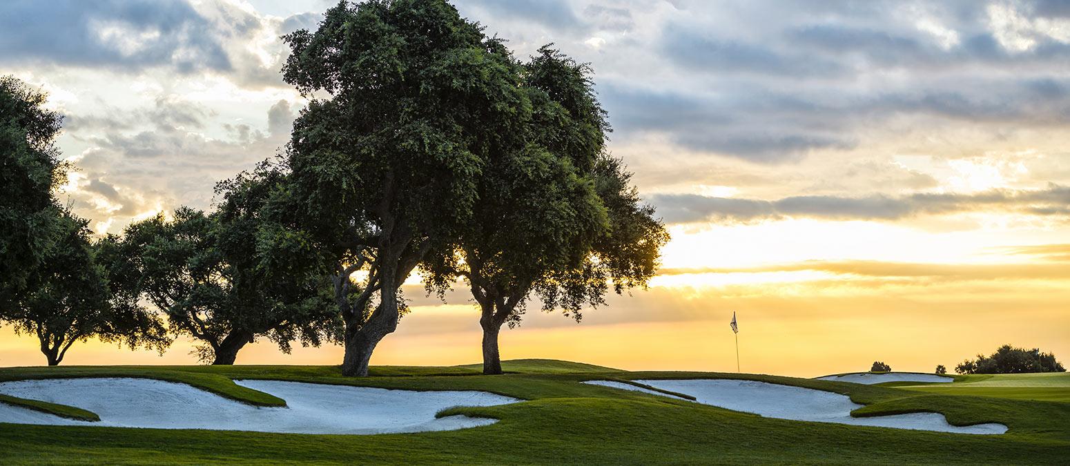 golf-lm