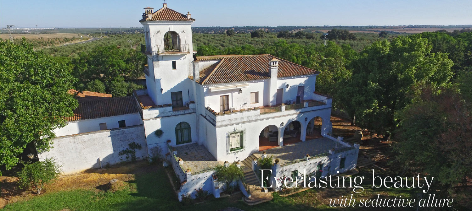 Country house in Andalusia - The Address Magazine article